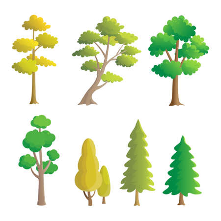 Collection of trees Illustration, natural design elements.