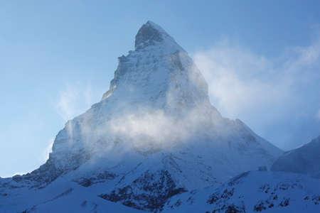 larch tree: Matterhorn