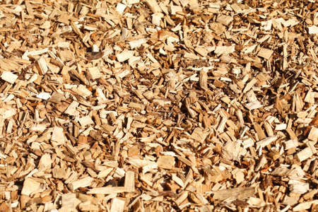 bark mulch: brown bark mulch for floors and ways Stock Photo