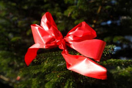 bucle: Lazo rojo en un árbol de navidad