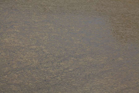 gray texture: curled brown-grey water surface