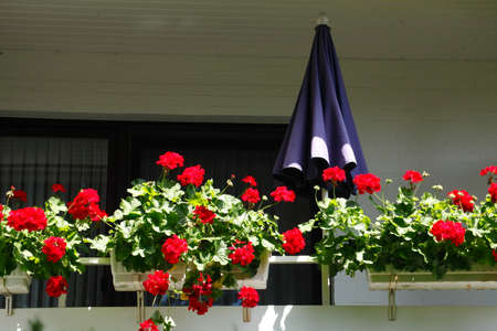 balcony with sunshade and flower boxes Stock Photo
