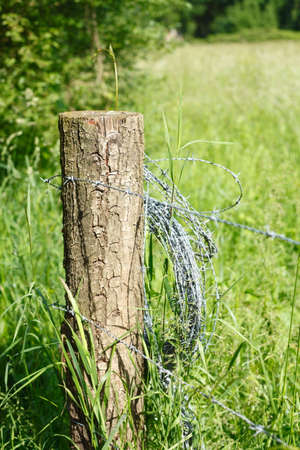 fence post. Wooden Fence Post, Rolled Up Barbed Wire Stock Photo Post
