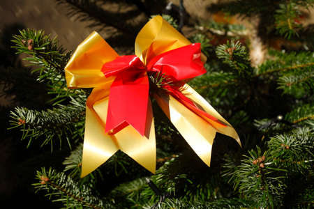 red-golden loop in a Christmas tree, Christmas decoration