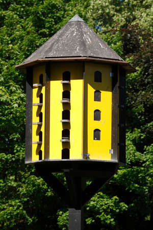 yellow wooden aviary for birds Banco de Imagens
