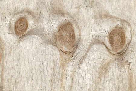 Wood texture, background image, light brown wooden wall on a construction fence with knothole