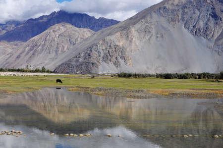 Reflection of lake, Ladakh, India Stock Photo - 16166163