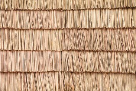 Straw patr�n
