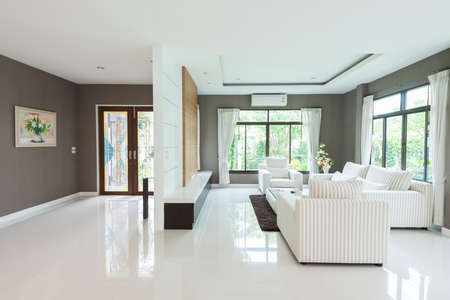 home furnishing: Modern living room