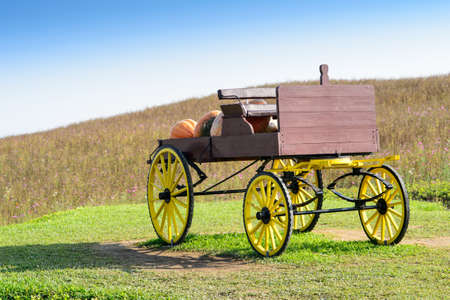 large pumpkin: Wagon in large pumpkin farm