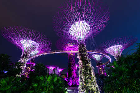 Supertree grove at garden by the bay in singapore Stock Photo