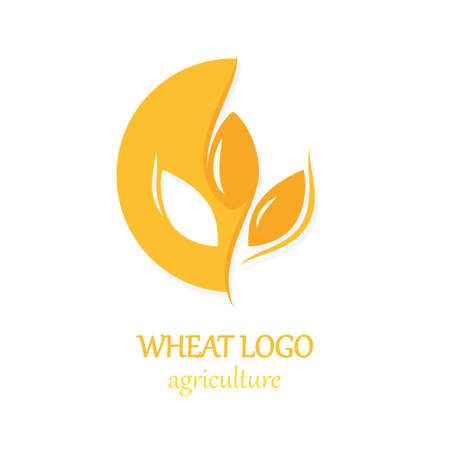 Agriculture Wheat Logo Icon Design Template Illustration