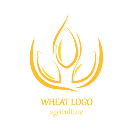 Agriculture Wheat Logo Icon Design Template  Illustration Çizim
