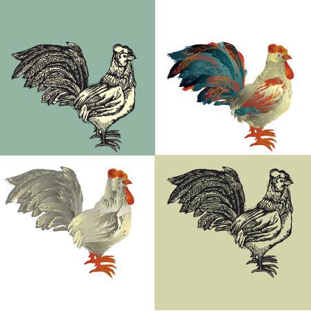 poult:  ilustraci�n. Polla pintada y la imitaci�n de grabado de madera y la xilograf�a de color Vectores
