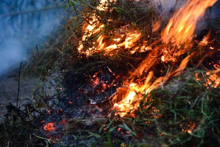 Bonfire background.