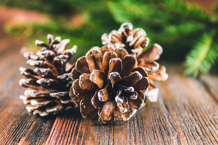 old desk: cones on the background of Christmas tree branches on a wooden background. Stock Photo