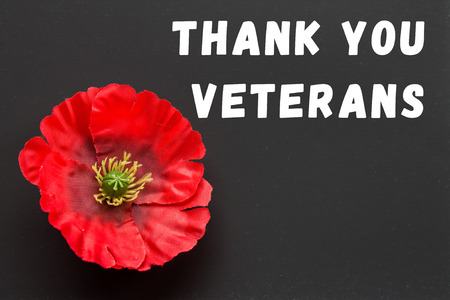 the text thank you veterans written in a chalkboard and red poppy on a rustic wooden background Stock Photo