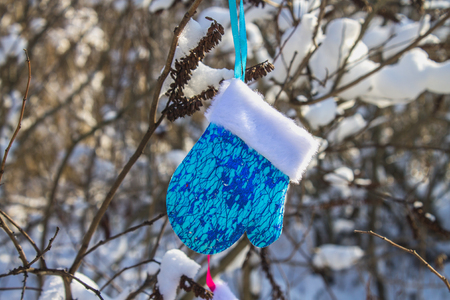 Blue and pink mittens hang on branches with snow. Christmas toys