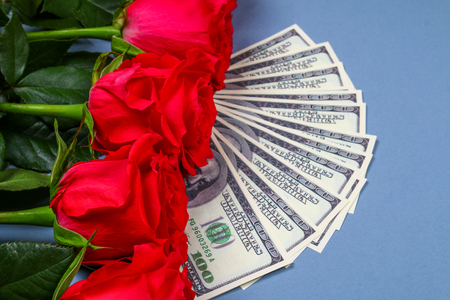 Pink roses with dollar bills instead of a gift. Template for March 8, Mothers Day, Valentines Day Stock Photo