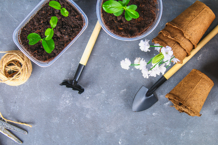 Garden tools and pots on a gray concrete background. Top view, copy space Stock Photo