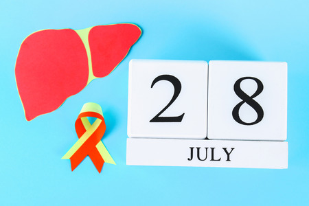 World Hepatitis Day. A wooden white calendar showing June 28 on a blue table. Red yellow ribbon and liver