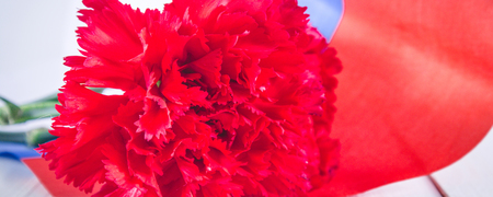Carnation and ribbon of St. George, as a symbol of victory against the background of the Russian flag. May 9, the day of victory