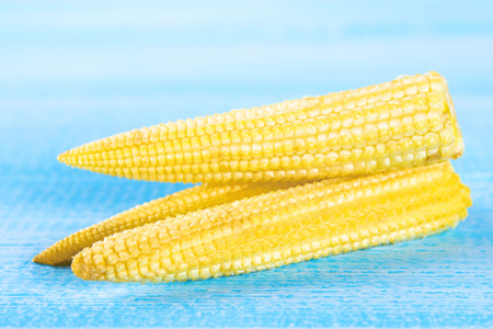 Baby sweetcorn or mini corn. It is typically the eaten whole cob included for the human consumption. It is eaten both raw and cooked. Baby corn is common in stir fry dishes Stock Photo