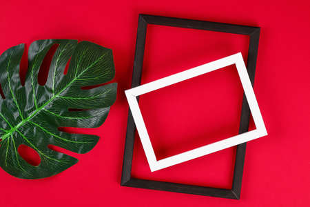 summer ideas concept with tropical leaf white and black frame border with on red burgundy paper background. Top view. free copy space. Flat lay, mock up.