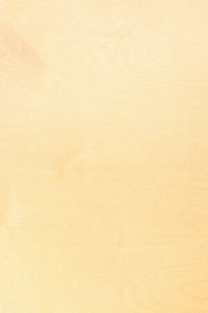 Plywood texture. Fragment of plywood shield. Top view. Natural texture. Wooden background