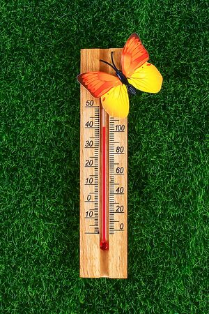 Thermometer displaying high 40 degree hot temperatures in sun summer day. temperature 40. Summer temperature. Thermometer on the grass with butterflies