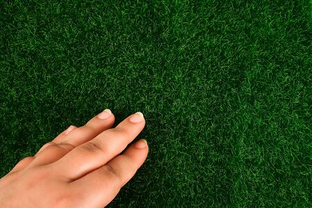 Hand touches the grass lawn. The concept of touch, tactility, feelings.