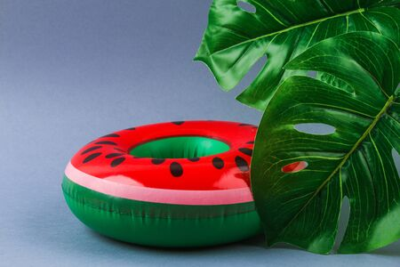 Inflatable watermelon on a grey background with monstera leaves. Summer concept of vacation. Background for sale.