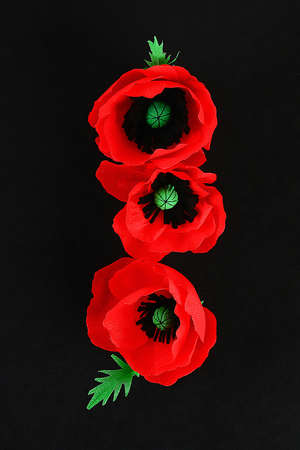 Diy paper red poppy Anzac Day, Remembrance, Remember, Memorial day made of crepe paper on black background. Symbol war. Gift idea, decor. Copy space. Top view.