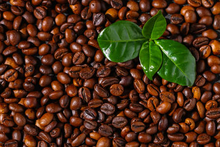 Roasted brown coffee beans. Top view. Coffee background texture. Reklamní fotografie