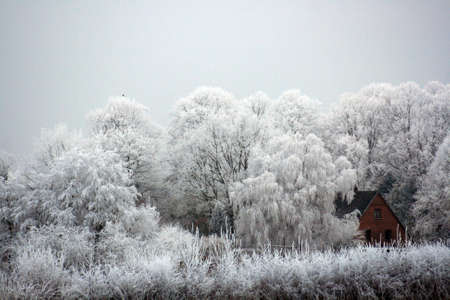 Winter in the countryside photo