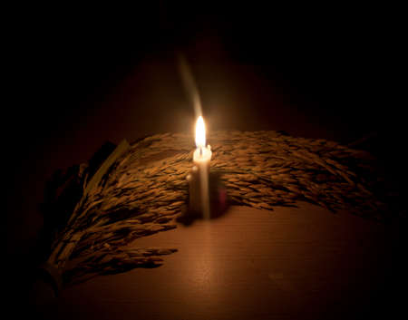 ancients: Farmers harvest rice in the night of the ancients, but must use candle light guides in the rice fields.