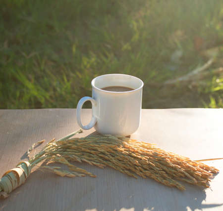 an atmosphere: Morning coffee and grains aroma Atmosphere Prof.