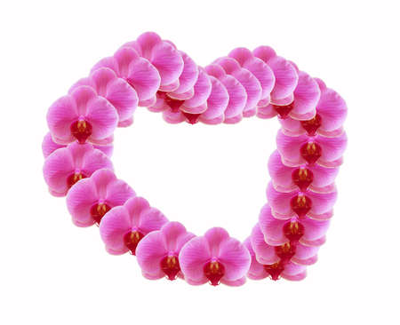 conveys: Flowers convey the love given to lovers in priority, its Christmas, Valentines Day. Stock Photo