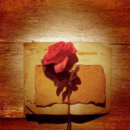 wood rose: paper, old, wood, rose