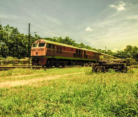 Train and nature