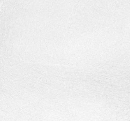 White texture background abstract