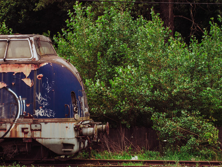 urban decay: Blue train in the woods - urban decay Stock Photo