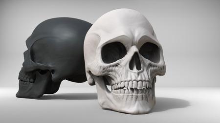 studio shot: Black and white skulls - studio shot - 3D Illustration