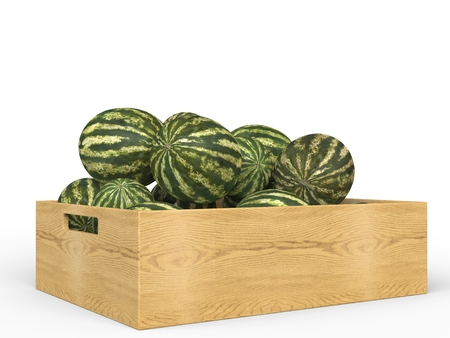 wooden crate: Watermelons in wooden crate Stock Photo