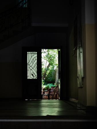 Small green garden hidden in the dark passageway