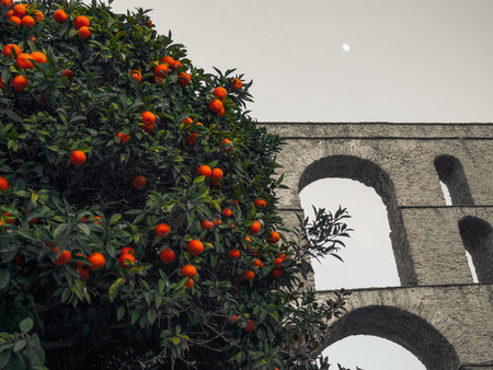 Orange tree in front of the ancient Roman aqueduct - Kavala, Greece Stockfoto - 123224805