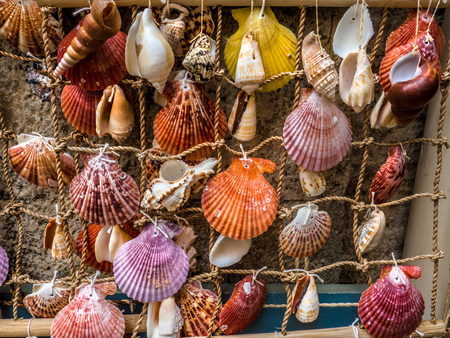 Sea shells tied to rope net - homemade decorations
