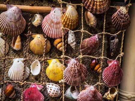 Small colorful sea shells rope net homemade decoration Reklamní fotografie