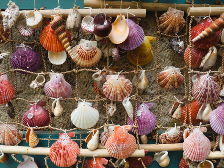 Colorful sea shells tied to rope net - homemade decorations