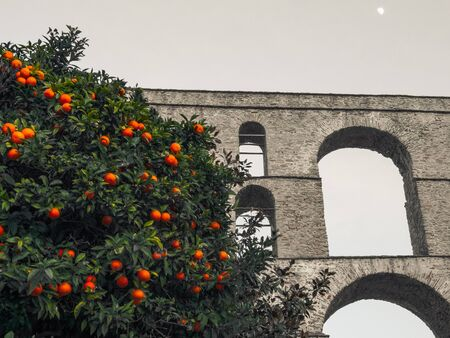 Orange tree in front of ancient roman aqueduct